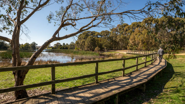 walking on the boardwalk at Traralgon Railway Reservoir Conservation Reserve