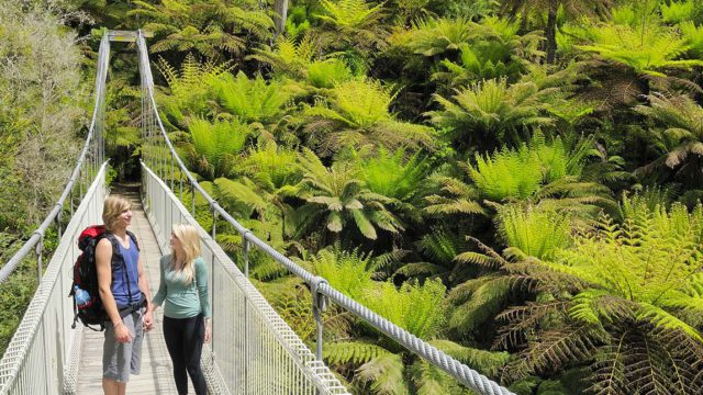 people walking across the suspension bridge at tarra-bulga-national-park